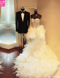 Hi-Lo Wedding Dresses 2015 See Through Wedding Gowns Sexy Feathers Ruffles Long Sweep Train Robe De Mariee 2016 Beading W5877P
